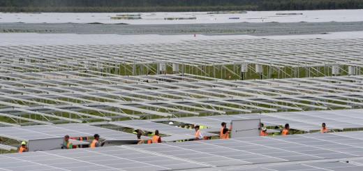 Centrale solaire de Cestas